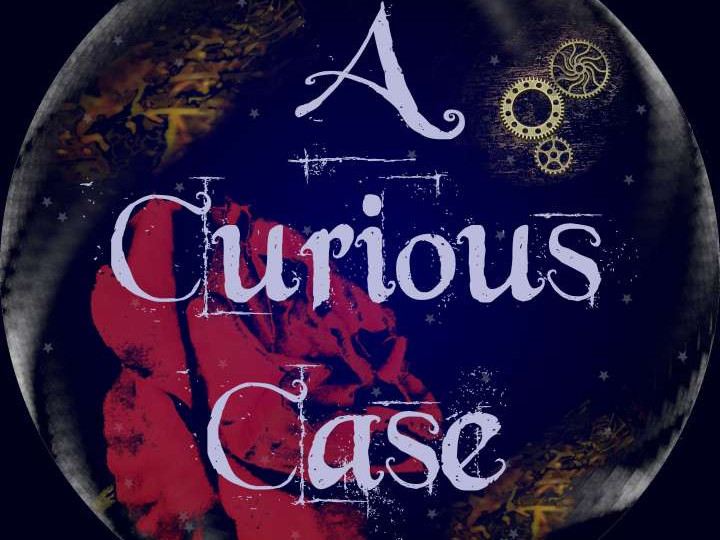A Curious Case photo 1