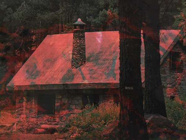Cabin Fever photo 1