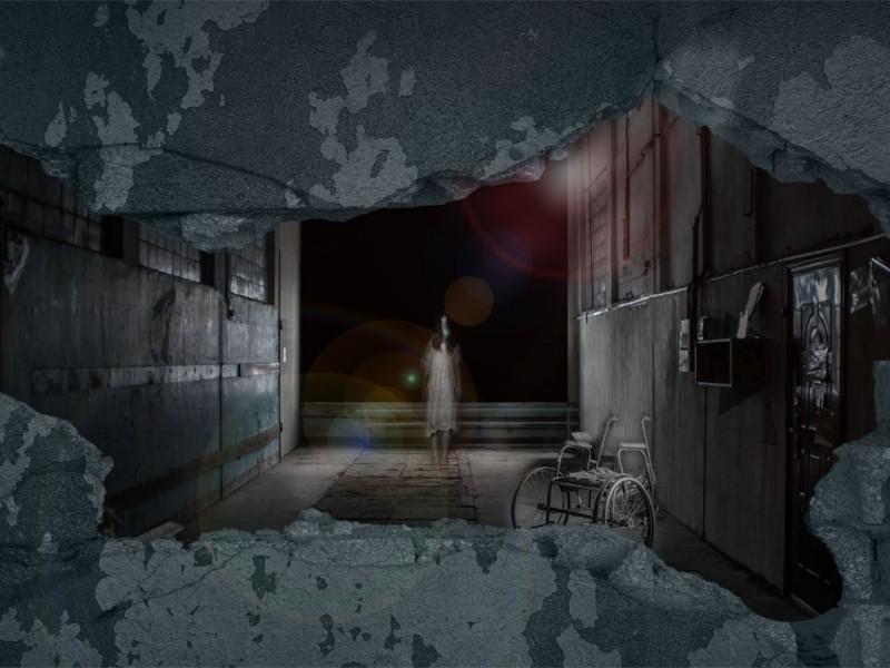 The Asylum photo 1