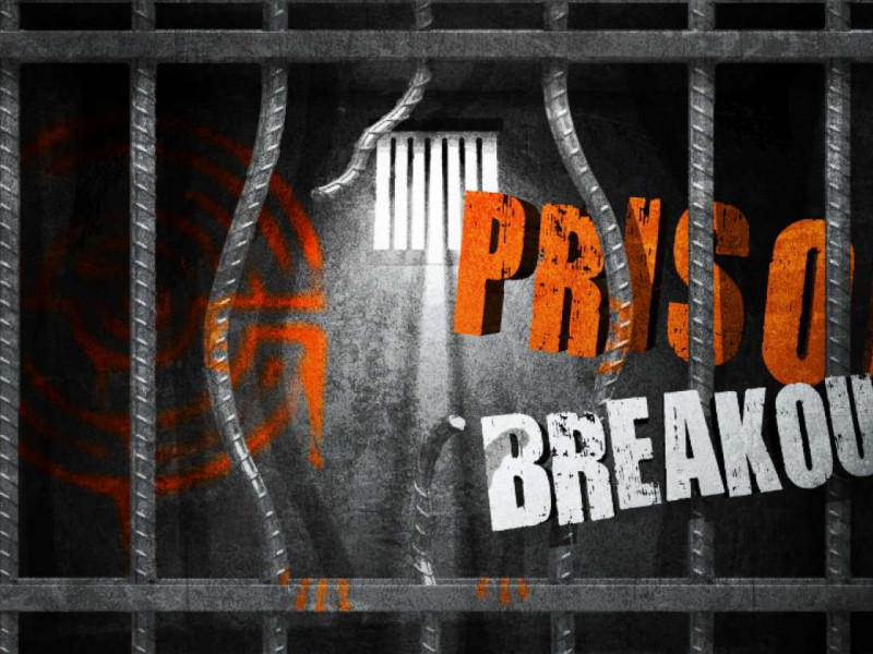 Prison Breakout photo 1