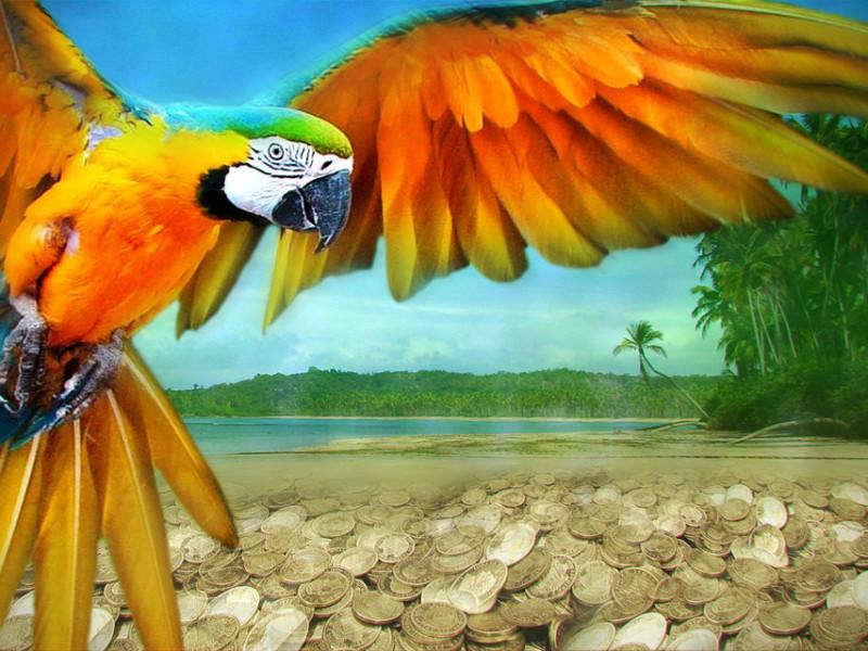 The Treasure Bird photo 1