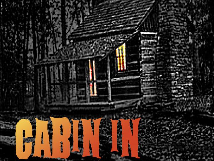 Cabin in the woods photo 1