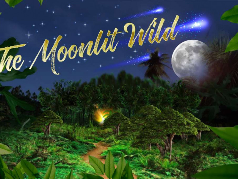 The Moonlit Wild photo 1