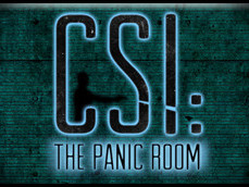 CSI: The Panic Room photo 1