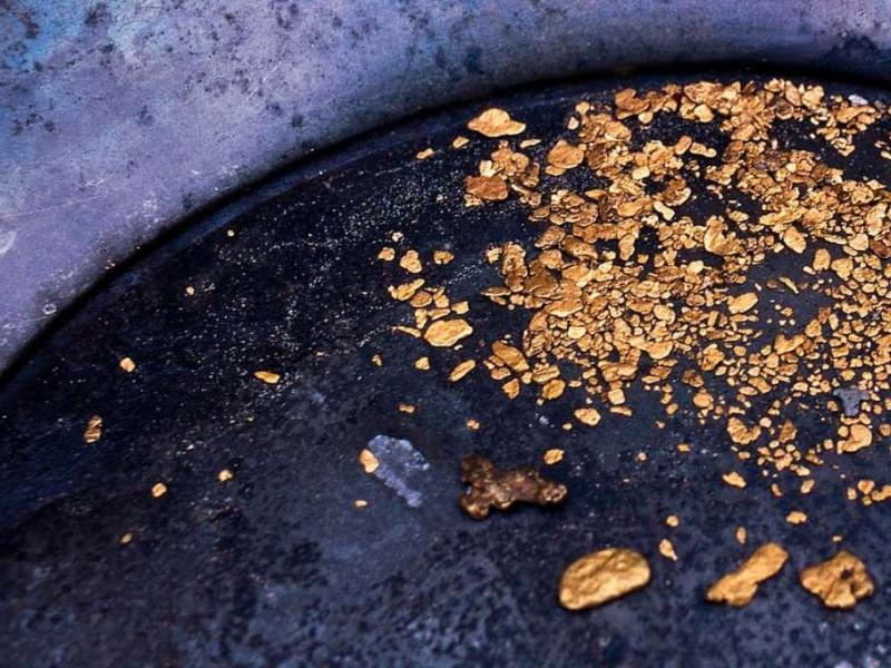 Gold Rush photo 1