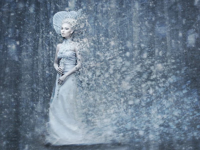 The Lion, the Witch and the Wardrobe photo 1